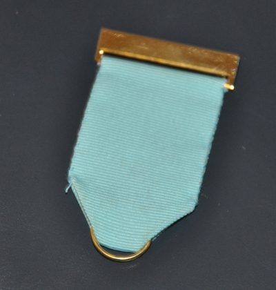 Craft Breast Jewel Top Bar Ribbon and Ring - gilt
