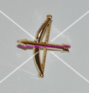 OSM Bow & Arrow Logo Gold Plated Lapel Pin