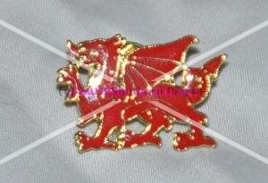 Welsh Dragon Enamel Lapel Pin