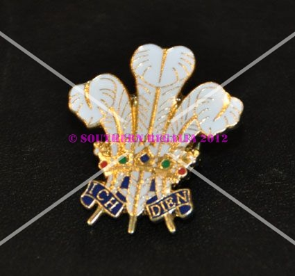 Welsh Feathers Enamel Lapel Pin