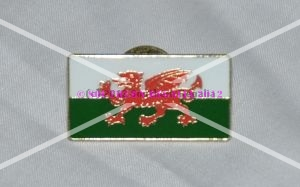 Welsh Flag Rectangular Enamel Lapel Pin